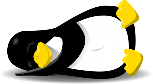 penguin-159784_960_720